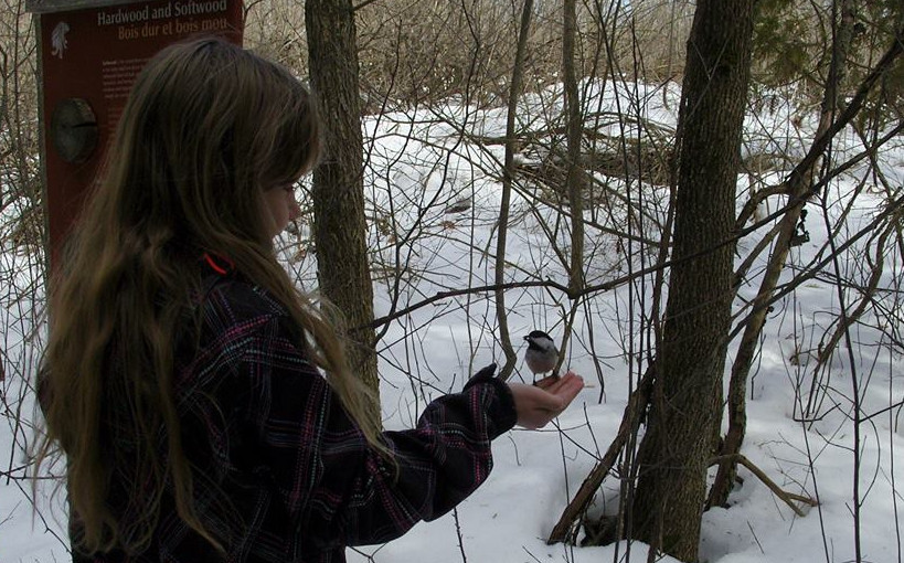 Little Girl with a chickadee on her hand
