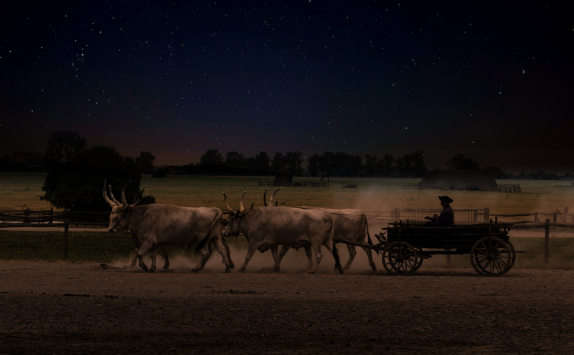 The Red River Ox Cart Ghost of Manitoba